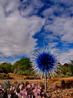 Chihuly in the Garden 2013-14
