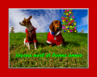 13DEC-4dogsCHRISTMAS44eBDRsoDN_resize